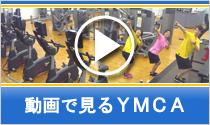 動画で見るYMCA